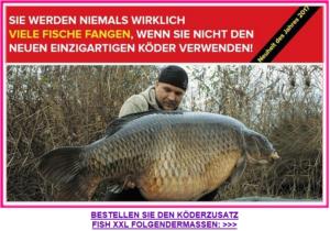 Fischkoeder Spam